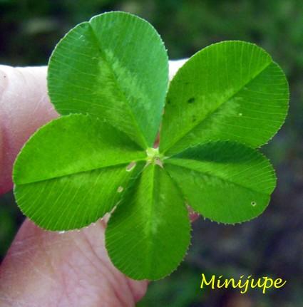 vendredi 13,super loto,euromillion,chance