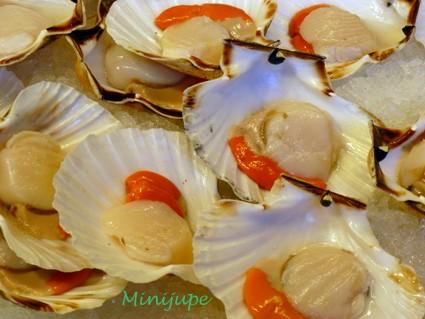 venise,rialto,mercato,italie,poisson,seiche