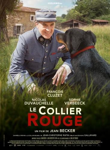 collier rouge,françois cluzet,chien
